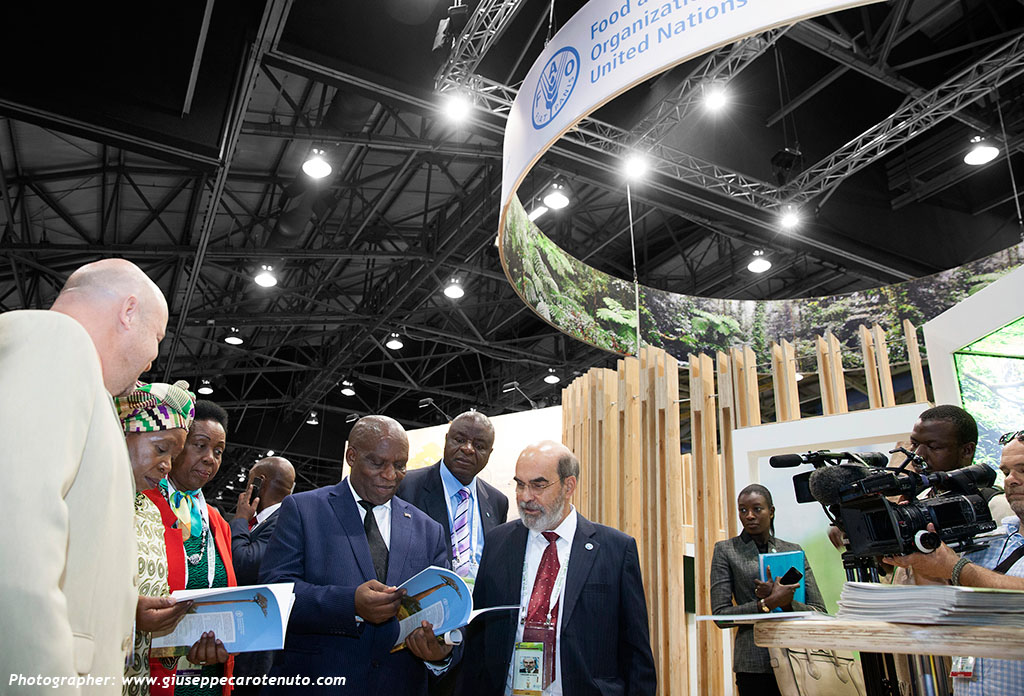FAO_Pavillion_World-Forestry-Congress-2015_HOTT3D_custom-stand_28
