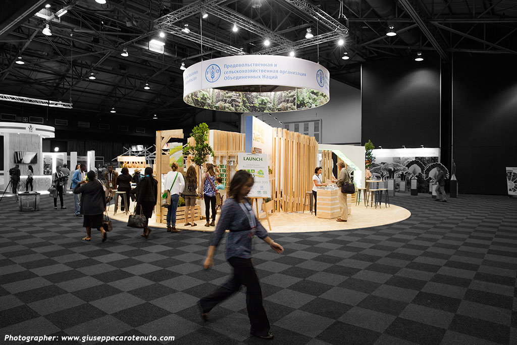 FAO_Pavillion_World-Forestry-Congress-2015_HOTT3D_custom-stand_30